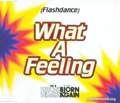 Björn Again - (Flashdance) What a feeling / Copyright Björn Again