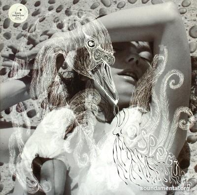 Björk - Vespertine / Copyright Björk