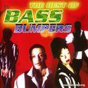 Bass Bumpers 0014220.jpg