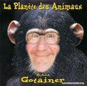 Richard Gotainer 0014794.jpg