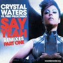 Crystal Waters 0019941.jpg