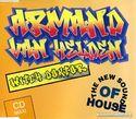 Armand Van Helden 0014219.jpg