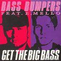 Bass Bumpers 0006771.jpg